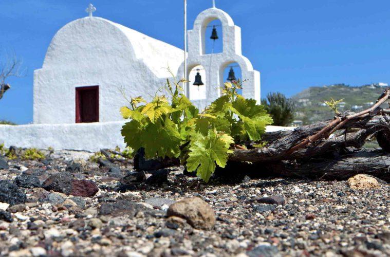 Wine Athens