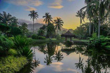The Farm at San Benito, Philippines