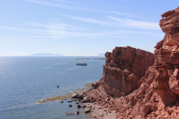 Sea of Cortez, Baja California, Mexico