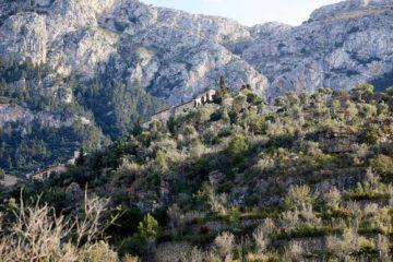Mallorca, Balearic Islands, Spain by Martin Perry