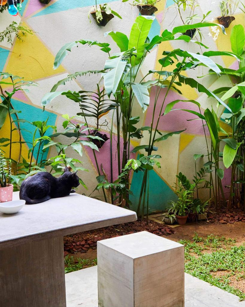 Mahasen by Foozoo, Colombo, Sri Lanka