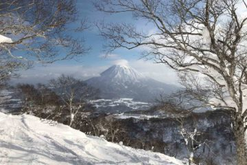 View at Higashiyama Niseko, a Ritz-Carlton reserve in Japan!