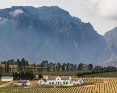 Brookdale Estate in Paarl, South Africa