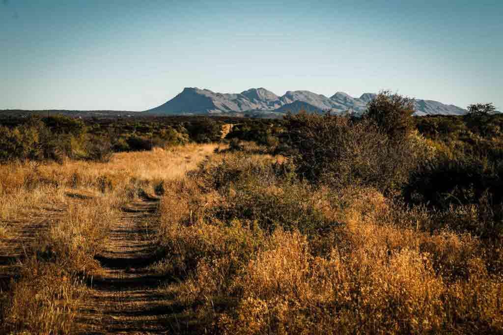 An excursion at Zannier Hotels Omaanda, Namibia
