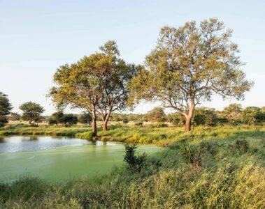 Singita Lebombo Lodge, Kruger, South Africa