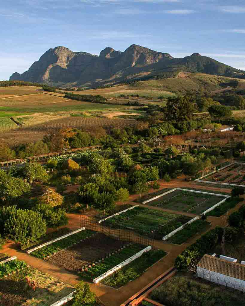 Aerial view of the gardens at Fynbos Family House, Babylonstoren, South Africa