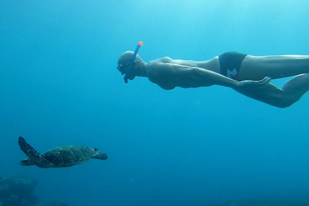 Snorkelling with sea turtle Soneva Maldives