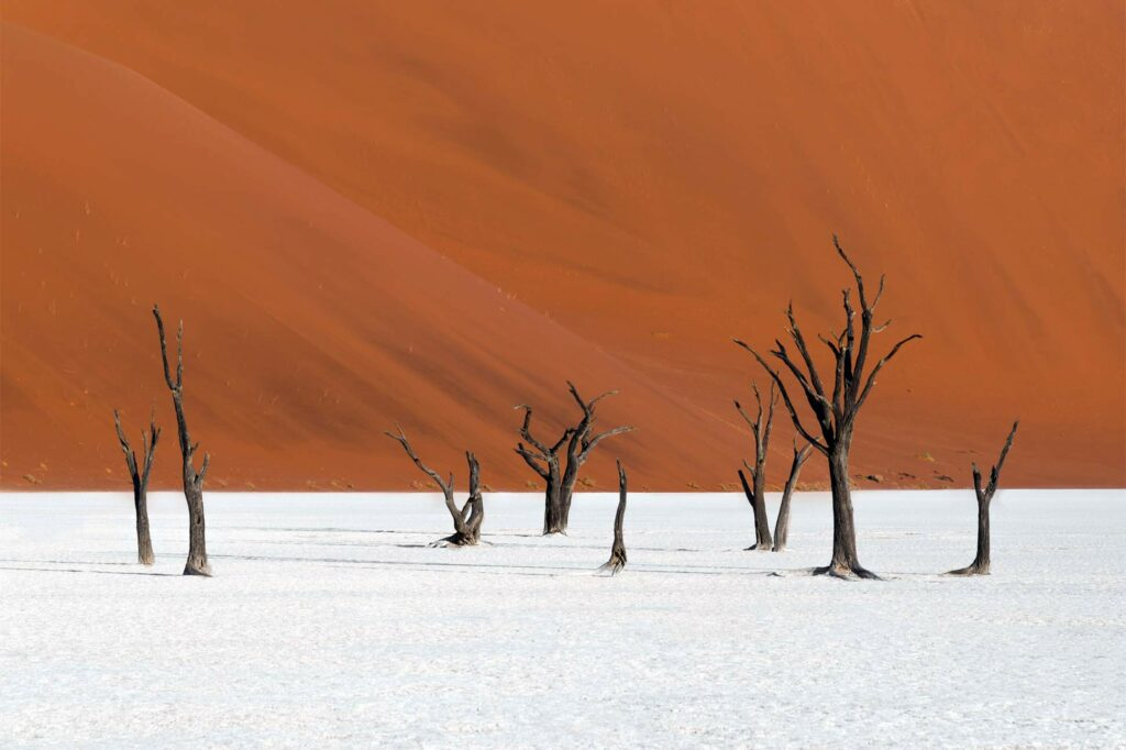 Deserts of Namibia