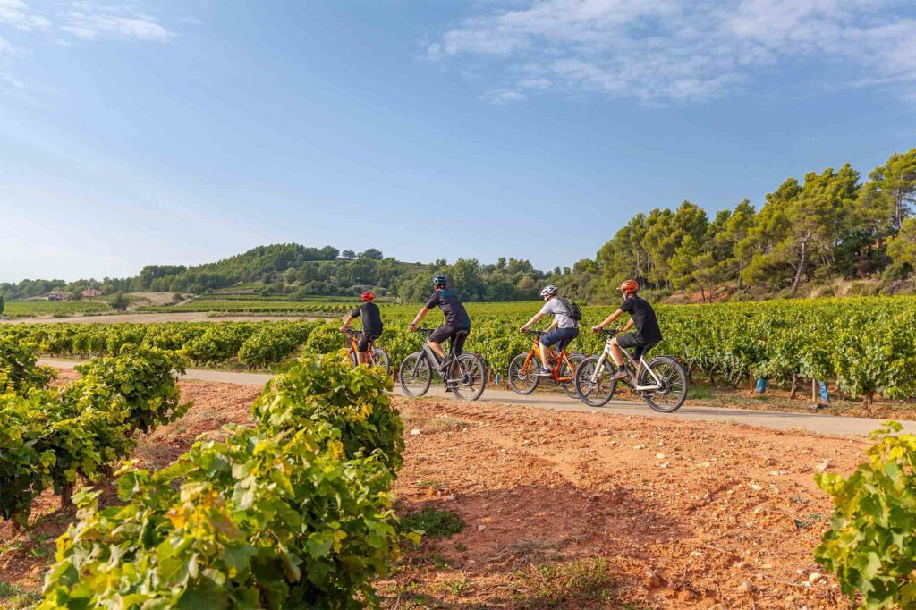 Self-guided biking tour around the vineyards of southern France