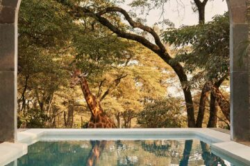 The Retreat at Giraffe Manor, The Safari Collection